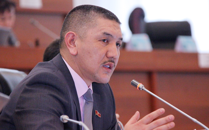Правительство раскритиковали за отсутствие предприятий госчастного партнерства