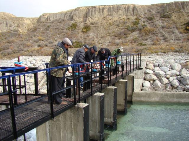 В Нарынской области завершен первый этап строительства водозабора на реке «Ак-Сай»
