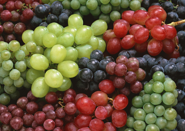 Матвиенко о кыргызском винограде: «Вкуснота необыкновенная»