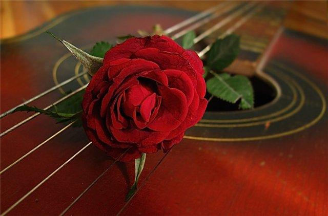 В Бишкеке пройдет вечер испанской гитары