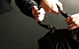 В Казахстане у девушки украли сумку с 24 миллионами тенге