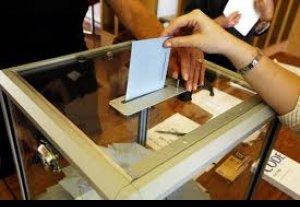 По миру проголосовало 611 кыргызстанцев