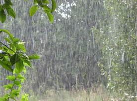 В Казахстане смогут искусственно вызывать дожди