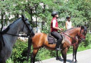 В столице проходит митинг с участием детей и лошадей