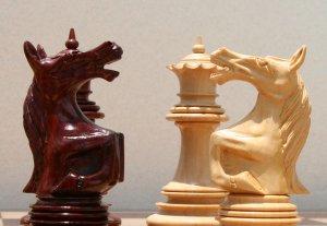 В Оше ежегодно планируют проводить шахматные турниры
