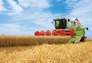 Государство выделит дизтопливо для уборки сельхозурожая
