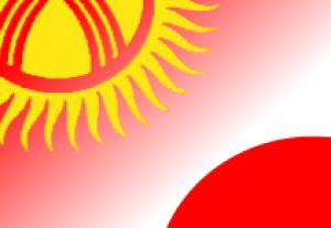 Япония направит 268 тысяч долларов на поддержку Нарынской области