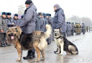 С 30 декабря по 1 января милиция будет нести усиленную службу