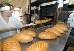 Мэрия Бишкека планирует построить хлебный завод