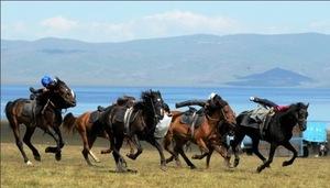 В Кыргызстане пройдет фестиваль, посвященный традициям конного искусства
