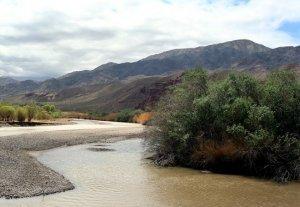 Шамиль Атаханов провел совещание по предотвращению размыва реки Чу