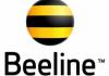 Beeline поддержал молодежный фестиваль