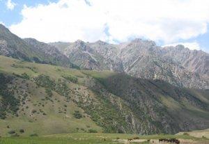 Правительство намерено выделить 50 миллионов сомов на строительство Бакай-Атинского водозабора