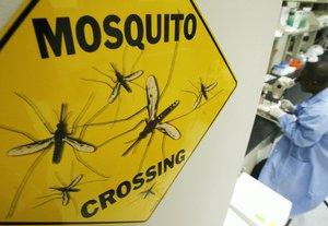 В Бишкеке создана дезинфекционная бригада для борьбы с малярией