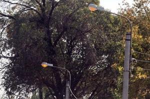 В микрорайоне Аламедин -1 восстановлено уличное освещение