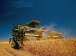 В 2013 году посевная площадь сельскохозяйственных культур составила 1 млн 170 тыс. гектаров