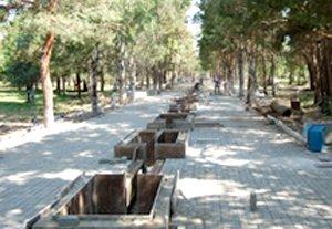 Игорь Трофимов: «Требуем привлечь к ответственности мэра за трагедию, произошедшую в парке Ататюрка»
