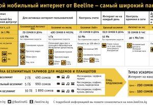 Beeline: Широкий пакет предложений высокоскоростного Интернета