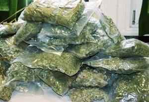 Государственной службой по контролю наркотиков было изъято более 30 тонн наркотиков