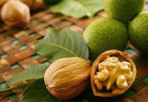 В Кыргызстане собираются начать промышленное выращивание грецкого ореха