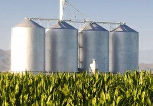 Депутаты намерены обязать АЗС использовать биотопливо