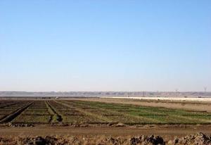 На орошаемых землях приграничных районов, возможно, разрешат строить дома