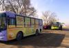 Депутат БГК возмущен рекламой презервативов и чая на муниципальных автобусах