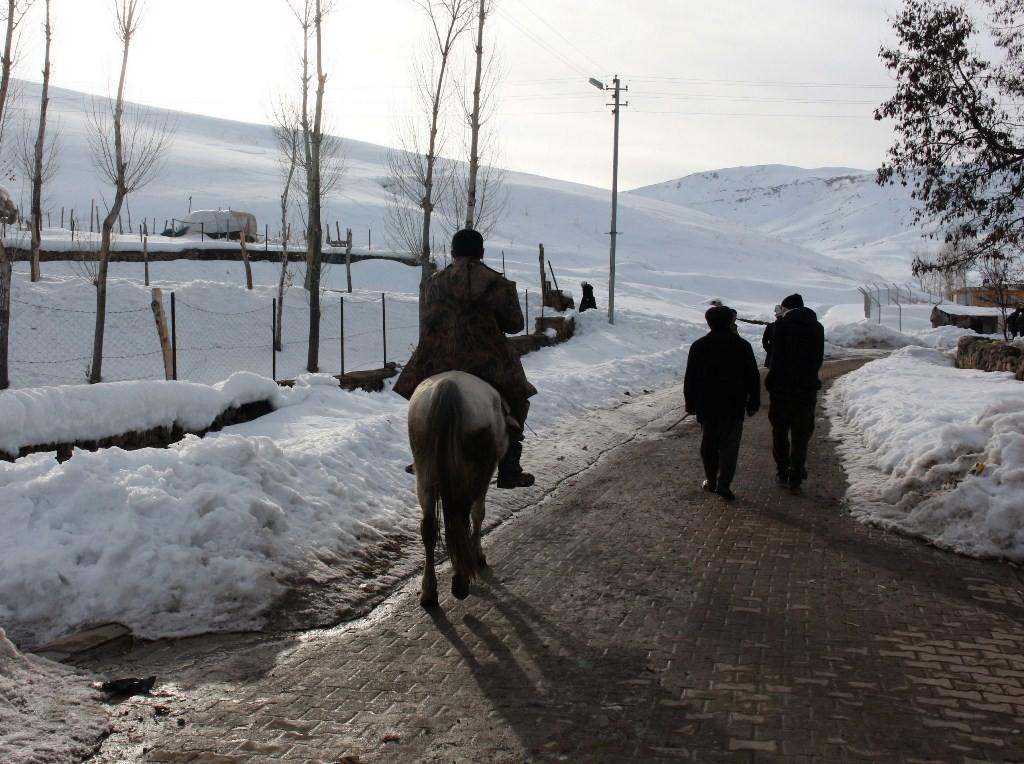 кыргызы Улуу Памир Ван Турция