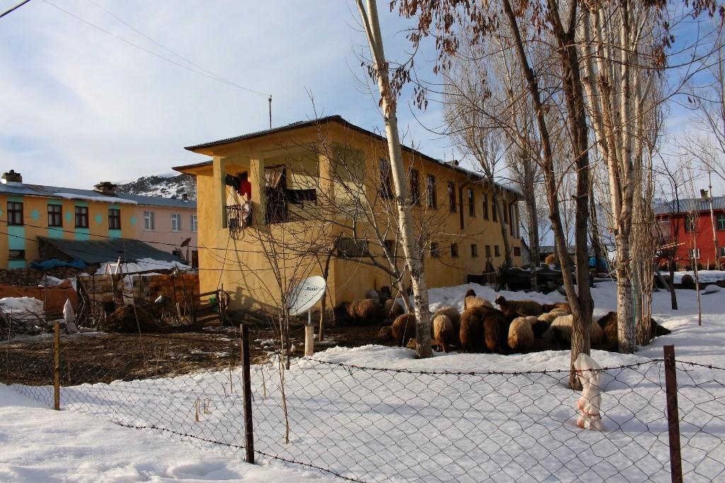 Дома, в которых живут кыргызы в селе Улуу Памир