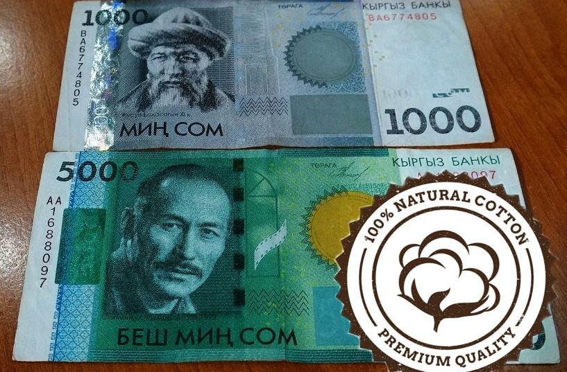 Кыргызские деньги независимое объединение нумизматов