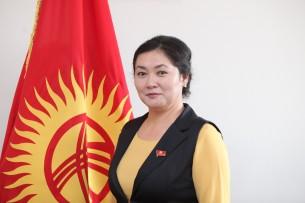 СДПК не стала рассматривать инцидент между Жылдыз Мусабековой и журналистом