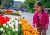 Бишкекчанам подарили тюльпаны