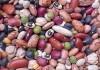 Правительство Кыргызстана планирует экспортировать фасоль на европейский рынок