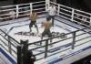 Первый турнир Академии ММА прошел в Бишкеке