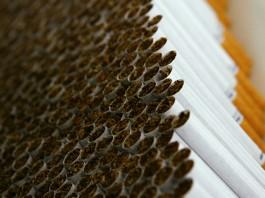 Налоговики в Джалал-Абаде изъяли более 4 тысяч пачек сигарет без акцизных марок