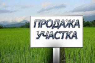 В горкенеше предложили признаться стоящим в очереди за участками бишкекчанам, что земли нет