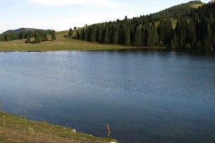 Во всех областях наблюдается маловодный период  — представитель Минсельхоза Кыргызстана о нехватке воды для орошения
