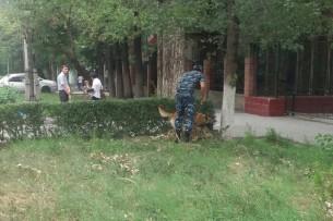 В здании Верховного суда Кыргызстана ищут бомбу (фото)