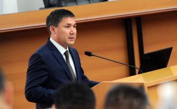 Дайыра Кенекеева предложили на пост вице-премьера вместо погибшего Темира Джумакадырова