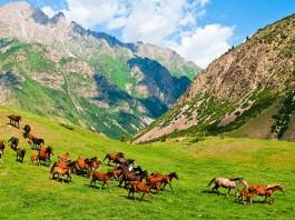 Казахстан поддержал идею единой визы Великого шёлкового пути