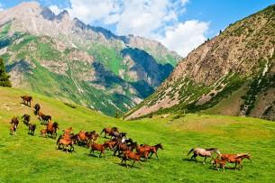 Кыргызстан вошел в пятерку премии National Geographic Traveler Awards 2016