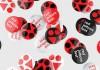 Red Jolbors представляет жюри юбилейного фестиваля