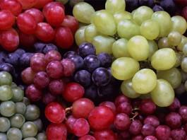 В мире исчезнет 85% виноградников: винный кризис