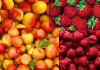 В Кыргызстане пропадает более 100 тыс. тонн абрикосов и яблок