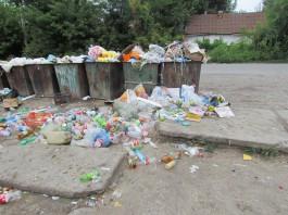 «Тазалык» установил мусорные баки в нескольких метрах от частного дома: владельцы жилья просят о помощи