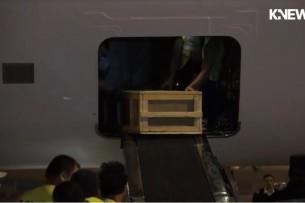 Тело погибшего под автобусом в Петербурге кыргызстанца готовят к отправке на родину