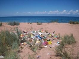 Звезды кыргызской эстрады примут участие в акции по сбору мусора на побережье Иссык-Куля