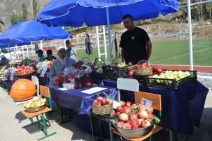 Около 600 фермеров собрались на фестивале яблок