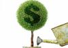 С начала года предпринимателям выдано льготных кредитов на 3,6 млрд сомов