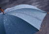 Прогноз погоды: в Бишкеке днем дождь
